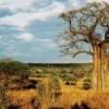 trek-afrique